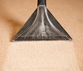 Carpet Cleaning South Lyon MI: Commercial & Residential | X-Treme Steam - carpet-cleaning